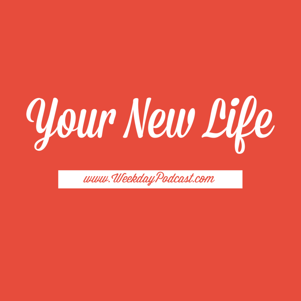 Your New Life Image
